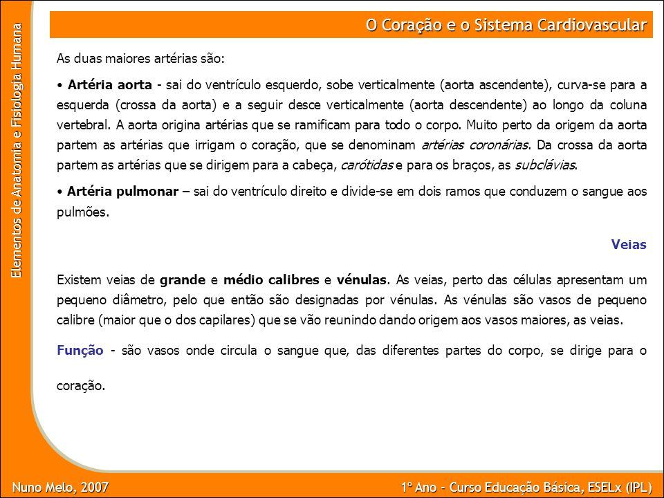 Nuno Melo, 2007 1º Ano - Curso Educação Básica, ESELx (IPL) Elementos de Anatomia e Fisiologia Humana O Cora ç ão e o Sistema Cardiovascular As duas m