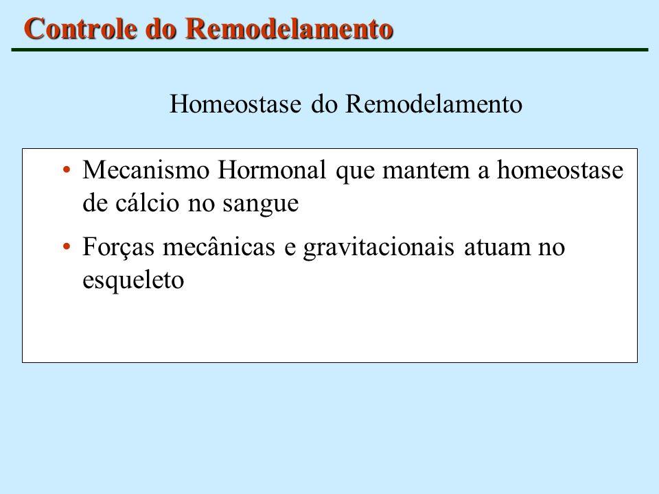 Controle do Remodelamento Mecanismo Hormonal que mantem a homeostase de cálcio no sangue Forças mecânicas e gravitacionais atuam no esqueleto Homeosta