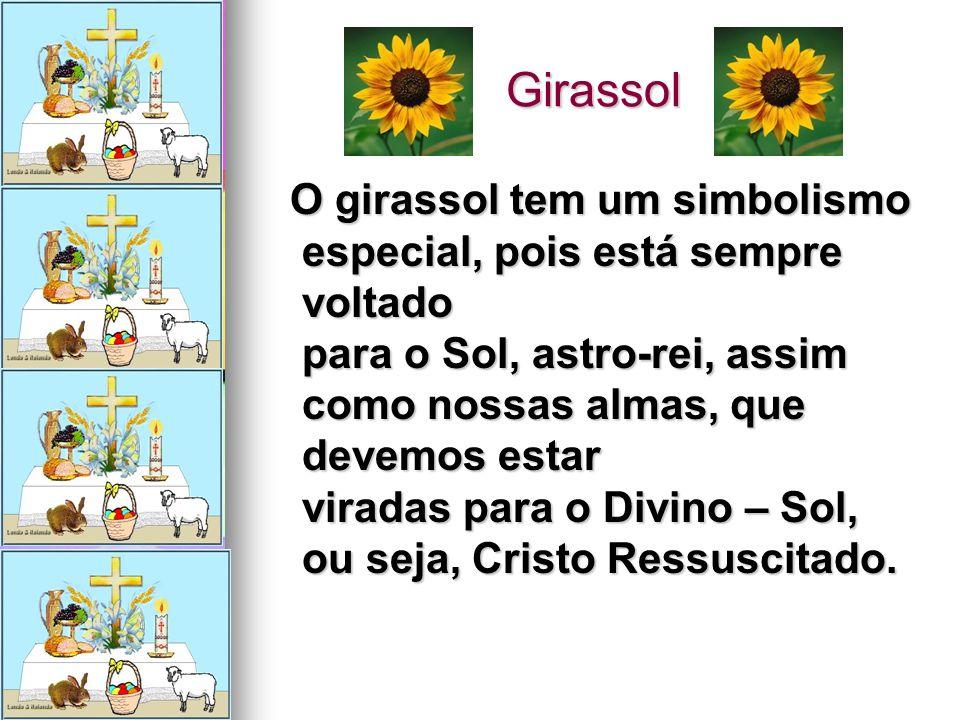 Girassol Girassol O girassol tem um simbolismo especial, pois está sempre voltado para o Sol, astro-rei, assim como nossas almas, que devemos estar vi