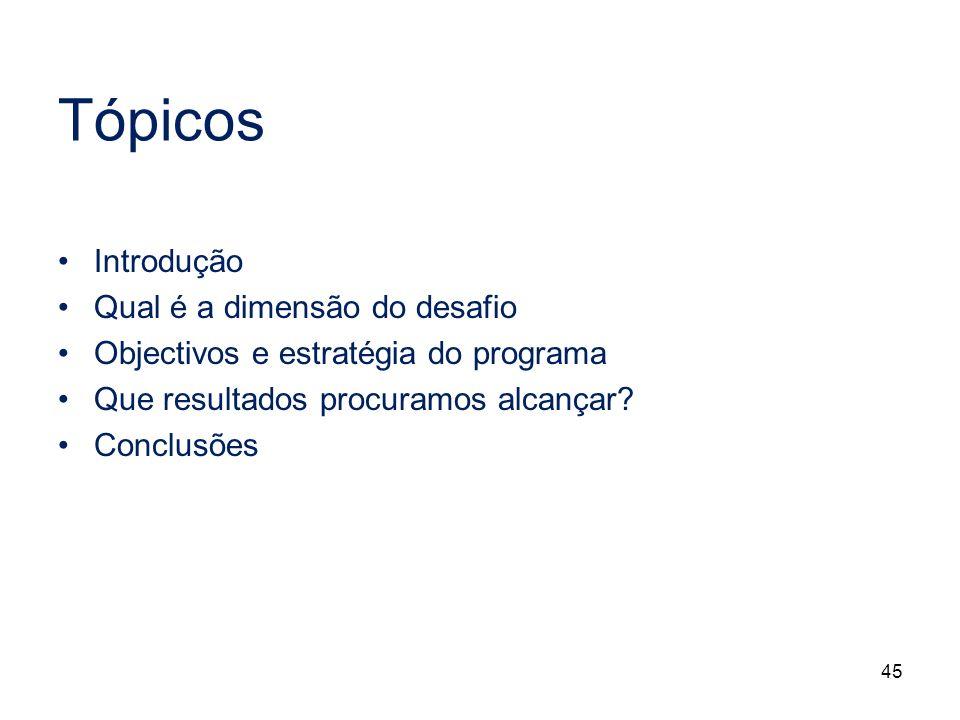 45 Tópicos Introdução Qual é a dimensão do desafio Objectivos e estratégia do programa Que resultados procuramos alcançar? Conclusões