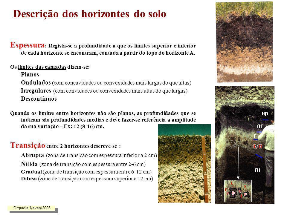 Descrição dos horizontes do solo Espessura : Regista-se a profundidade a que os limites superior e inferior de cada horizonte se encontram, contada a