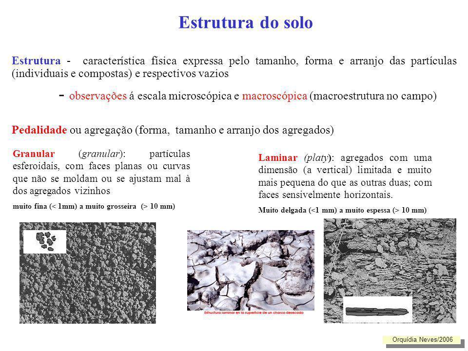 Estrutura do solo Estrutura - característica física expressa pelo tamanho, forma e arranjo das partículas (individuais e compostas) e respectivos vazi