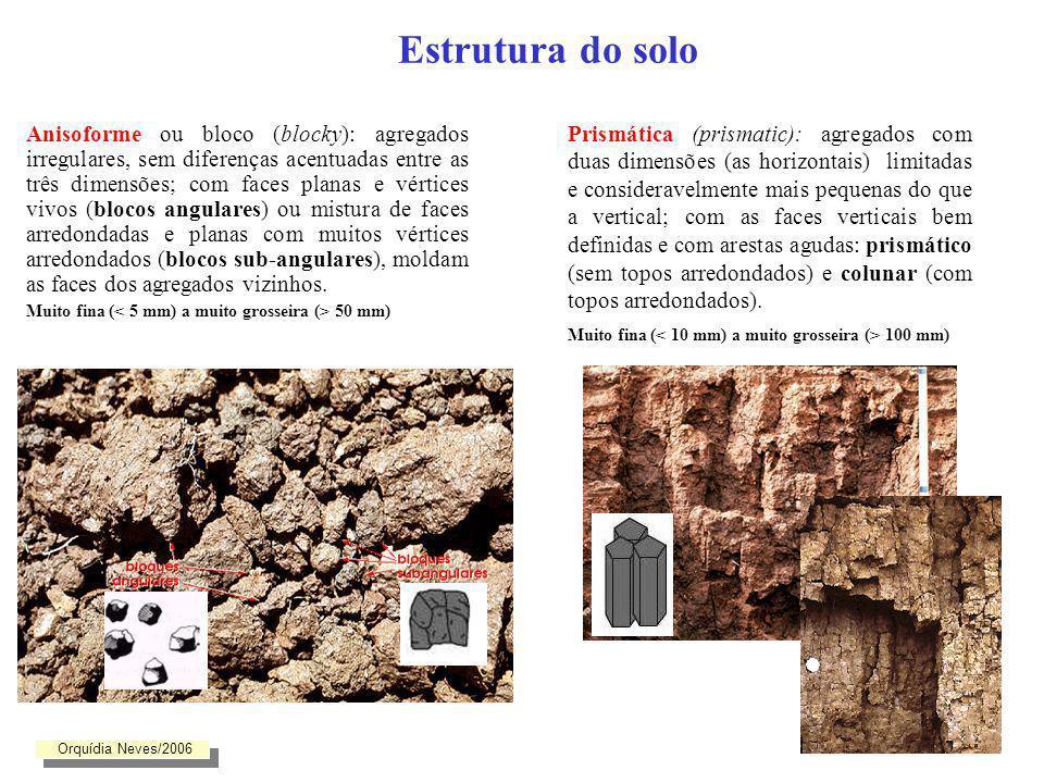 Estrutura do solo Anisoforme: angular e subangular Prismático e ColunarGranularLaminar Orquídia Neves/2006
