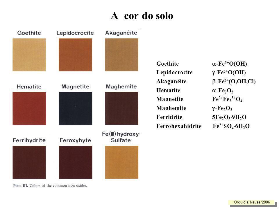 Classificar a cor do solo COR - determina-se comparando-a com os padrões da escala de Munsell e indica-se pelos parâmetros da respectiva escala: Pardo avermelhado escuro 5 YR 3 / 3 (s) Matiz Valor / Croma (s) ou (h): determinação realizada em solo seco ou húmido - Matiz (Hue) : cor espectral dominante- combinação dos pigmentos vermelho, amarelo, verde, azul e púrpura : matiz 5YR (4/4: 50% amarelo (yellow) e 50% de vermelho (red)) - Valor (Value): grau de clareza - indica a proporção de branco (valor 10) e de preto (0) ( está disposto no sentido vertical) valor 3 = a cor branca contribui com 30% e a cor preta com 70% - Croma (Chroma): saturação ou intensidade de pigmentação- refere-se à contribuição do matiz (nos solos varia de 0 a 8 e está disposto no sentido horizontal) Orquídia Neves/2006