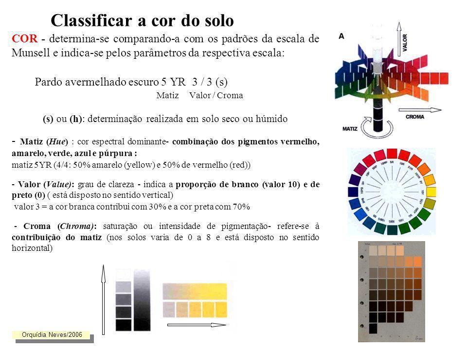 Classificar a cor do solo Se no perfil o solo se apresentar mosqueado ou manchado, deve indicar-se a cor de fundo (matiz) e a cor ou cores das manchas principais Essas manchas deverão ainda ser classificadas quanto ao contraste, abundância e tamanho.