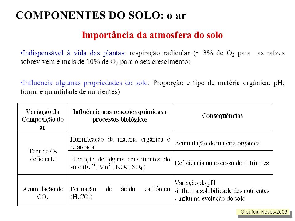 COMPONENTES DO SOLO: o ar Importância da atmosfera do solo Indispensável à vida das plantas: respiração radicular ( 3% de O 2 para as raízes sobrevive