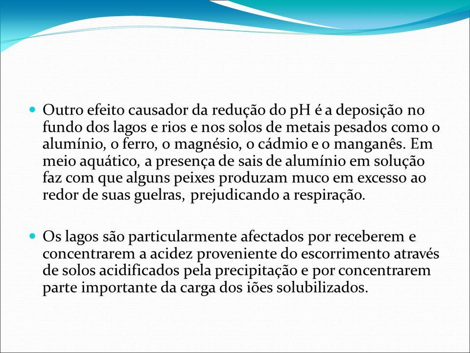 Outro efeito causador da redução do pH é a deposição no fundo dos lagos e rios e nos solos de metais pesados como o alumínio, o ferro, o magnésio, o c
