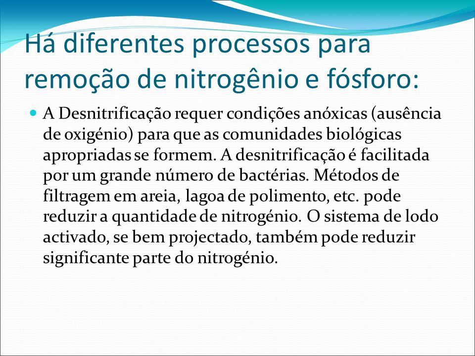 Há diferentes processos para remoção de nitrogênio e fósforo: A Desnitrificação requer condições anóxicas (ausência de oxigénio) para que as comunidad