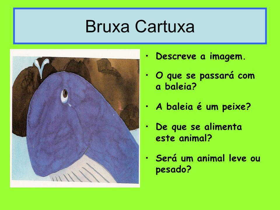Bruxa Cartuxa Descreve a imagem. O que se passará com a baleia? A baleia é um peixe? De que se alimenta este animal? Será um animal leve ou pesado?