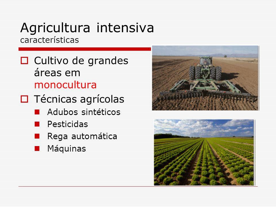 Agricultura intensiva características Cultivo de grandes áreas em monocultura Técnicas agrícolas Adubos sintéticos Pesticidas Rega automática Máquinas