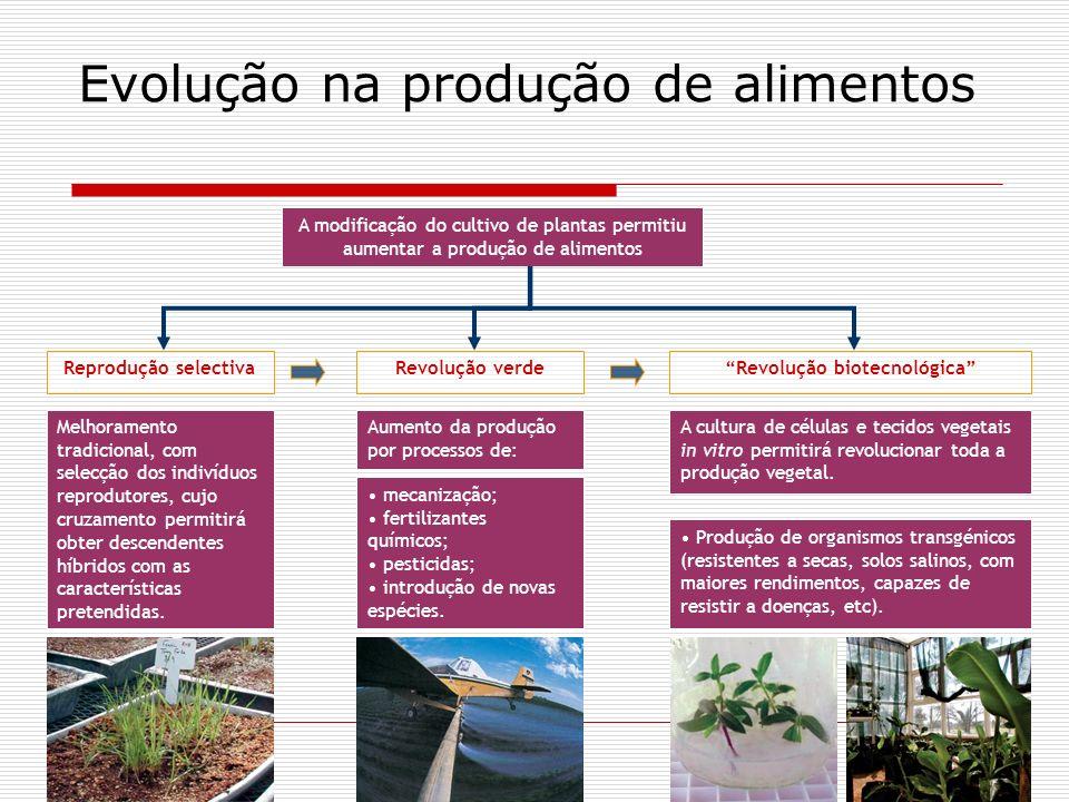 Evolução na produção de alimentos A modificação do cultivo de plantas permitiu aumentar a produção de alimentos Reprodução selectiva Aumento da produç