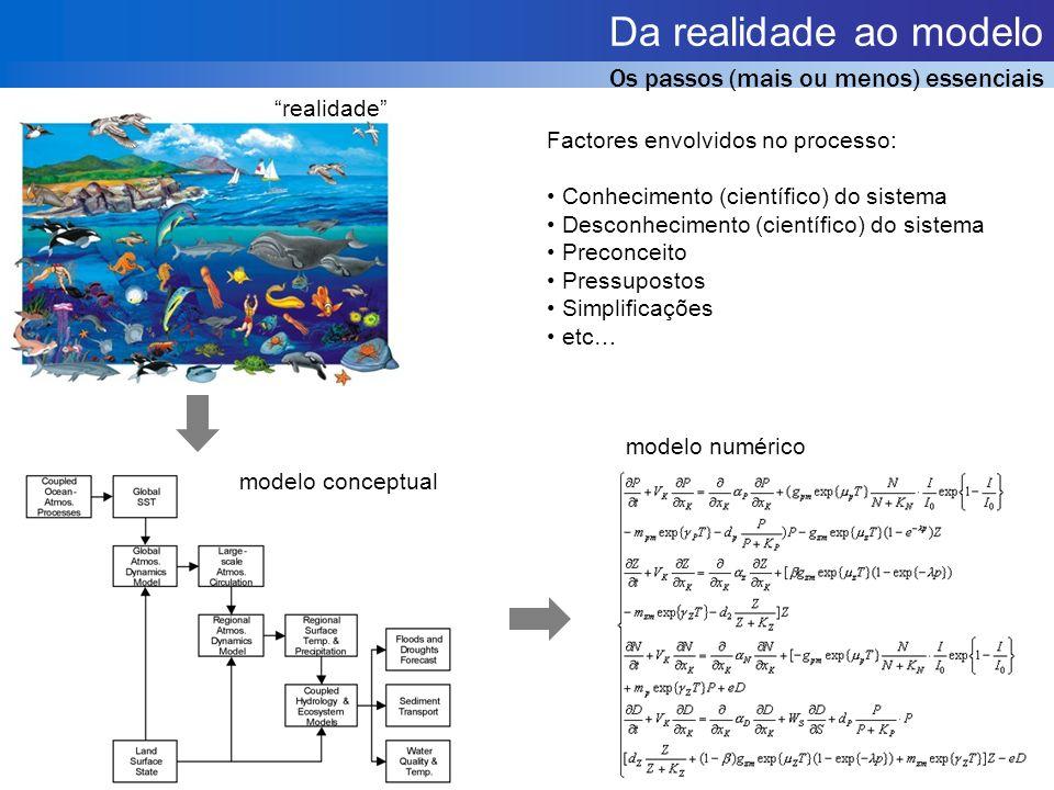 Da realidade ao modelo Os passos (mais ou menos) essenciais realidade modelo conceptual modelo numérico Factores envolvidos no processo: Conhecimento (científico) do sistema Desconhecimento (científico) do sistema Preconceito Pressupostos Simplificações etc…