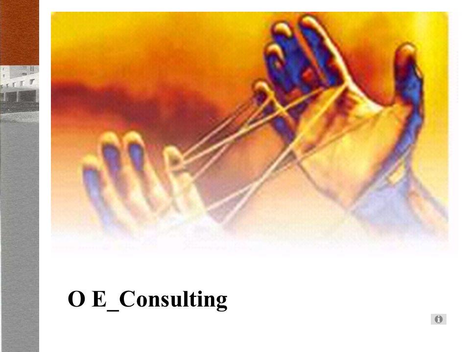 O E_Consulting