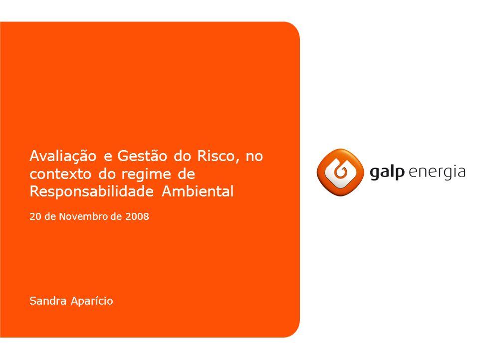 Avaliação e Gestão do Risco, no contexto do regime de Responsabilidade Ambiental 20 de Novembro de 2008 Sandra Aparício