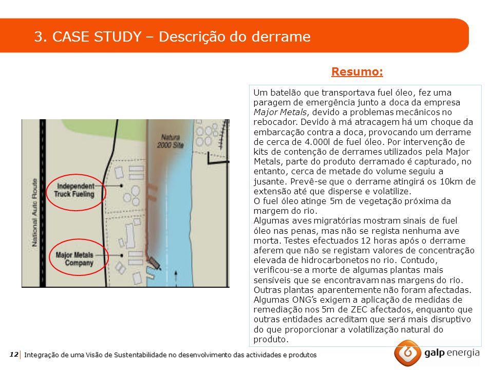 12 Integração de uma Visão de Sustentabilidade no desenvolvimento das actividades e produtos 3. CASE STUDY – Descrição do derrame Resumo: Um batelão q