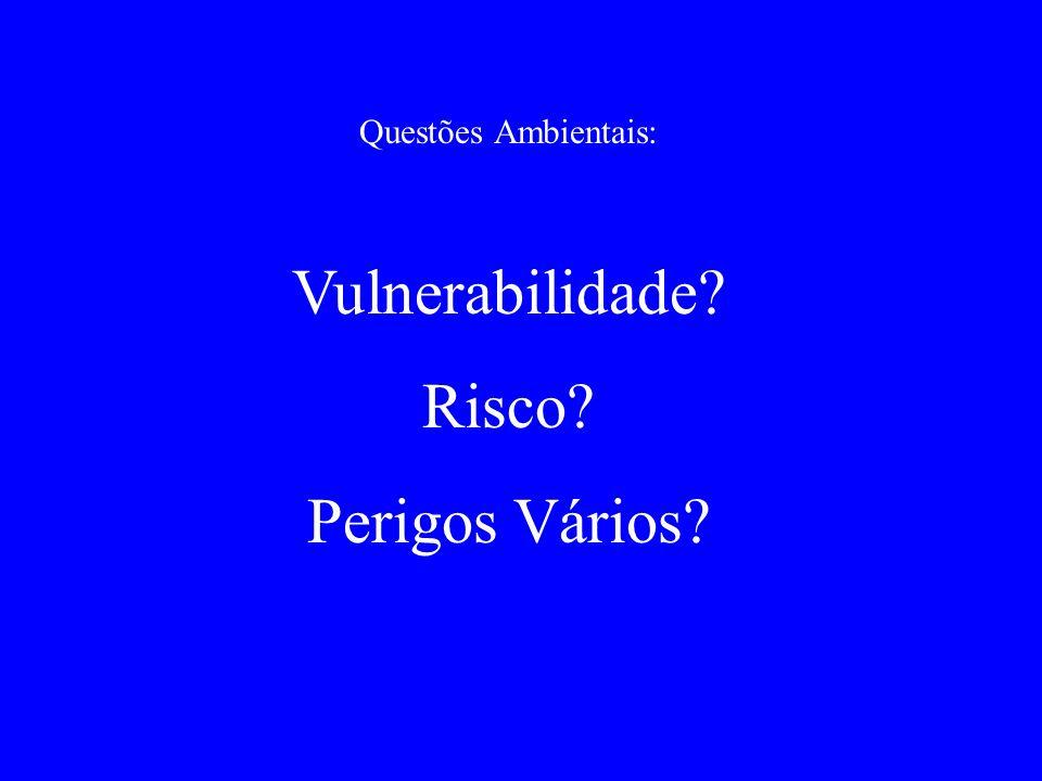 Questões Ambientais: Vulnerabilidade? Risco? Perigos Vários?