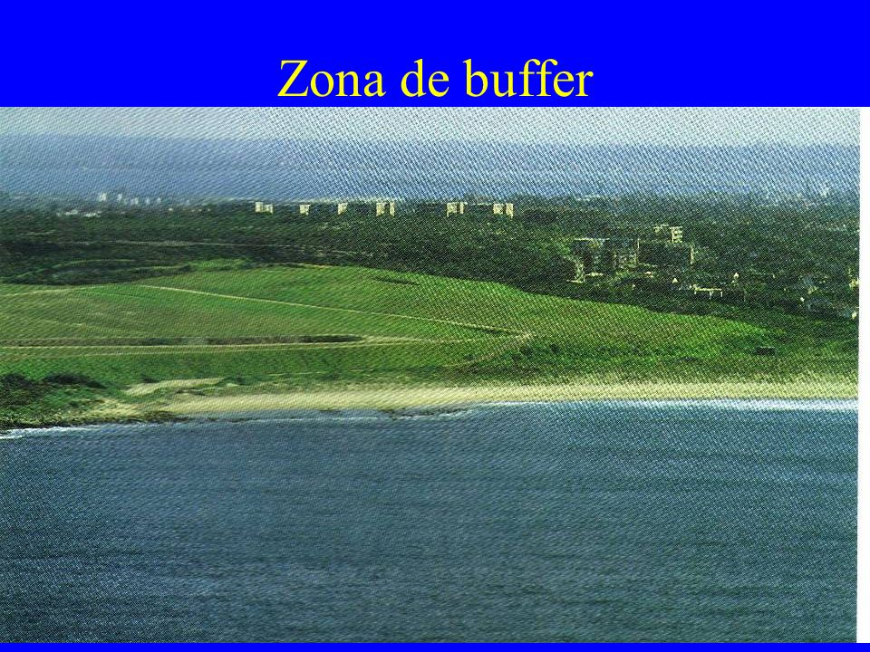 Zona de buffer