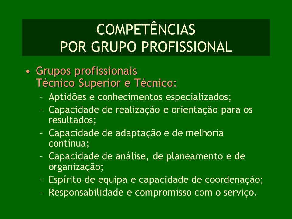 COMPETÊNCIAS POR GRUPO PROFISSIONAL Grupos profissionais Técnico Superior e Técnico:Grupos profissionais Técnico Superior e Técnico: –Aptidões e conhe
