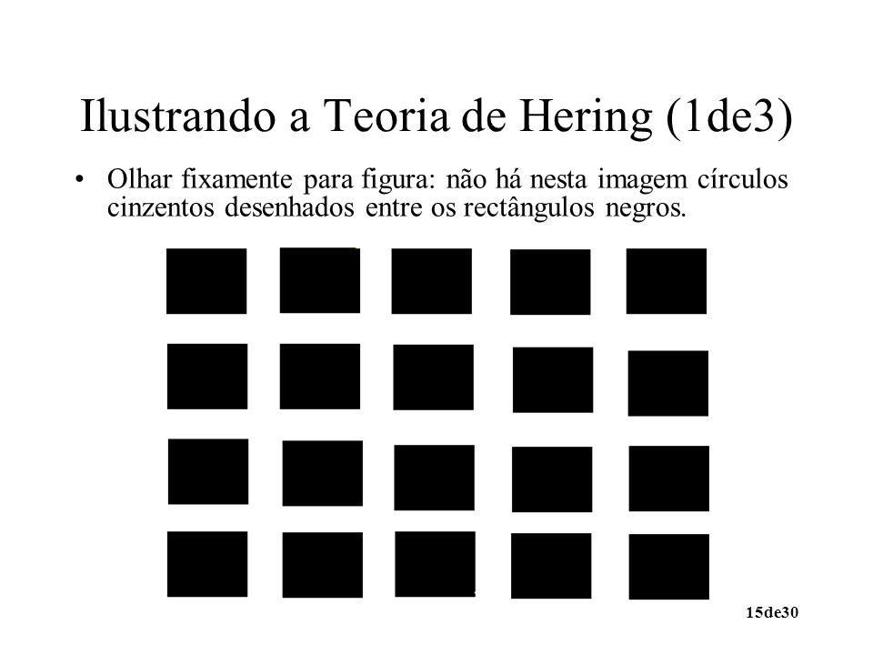 15de30 Ilustrando a Teoria de Hering (1de3) Olhar fixamente para figura: não há nesta imagem círculos cinzentos desenhados entre os rectângulos negros