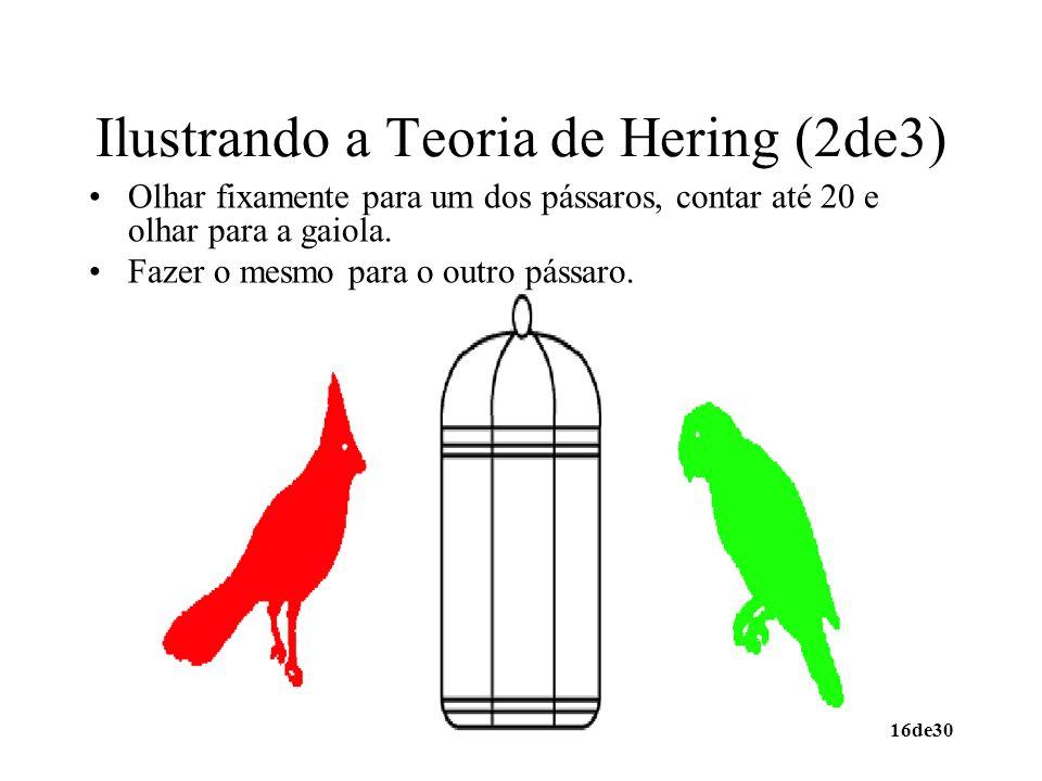16de30 Ilustrando a Teoria de Hering (2de3) Olhar fixamente para um dos pássaros, contar até 20 e olhar para a gaiola. Fazer o mesmo para o outro páss