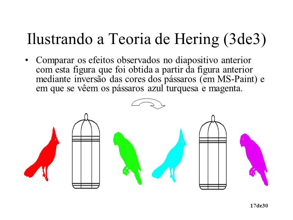 17de30 Ilustrando a Teoria de Hering (3de3) Comparar os efeitos observados no diapositivo anterior com esta figura que foi obtida a partir da figura a