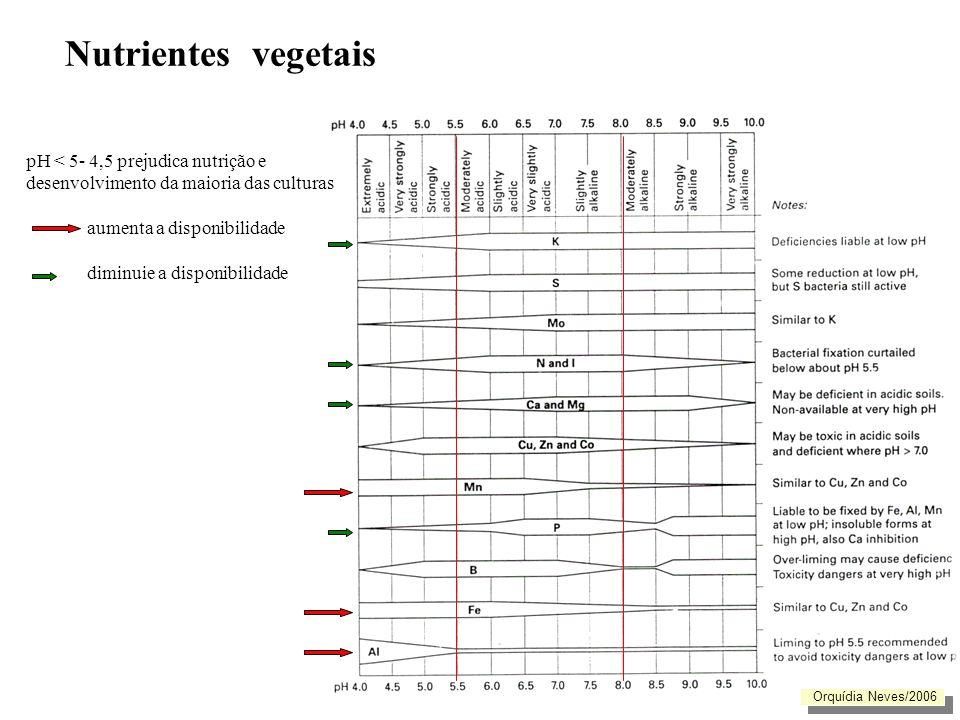 Nutrientes vegetais Sintomas de Deficiência Deficiência: Ca troca < 20% Manchas cloróticas Clorose Atrofiamento dos bagos Orquídia Neves/2006