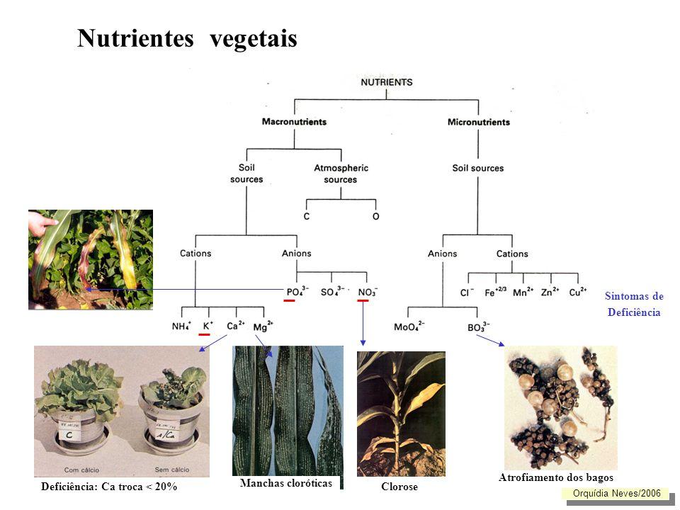 Nutrientes vegetais Valores padrão para a parte aérea das plantas (concentrações referidas ao peso seco, excepto quando indicado) Orquídia Neves/2006