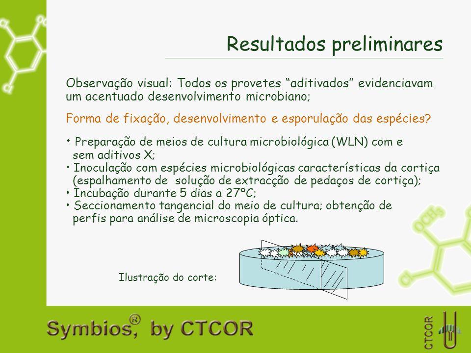 Resultados preliminares Observação visual: Todos os provetes aditivados evidenciavam um acentuado desenvolvimento microbiano; Forma de fixação, desenv