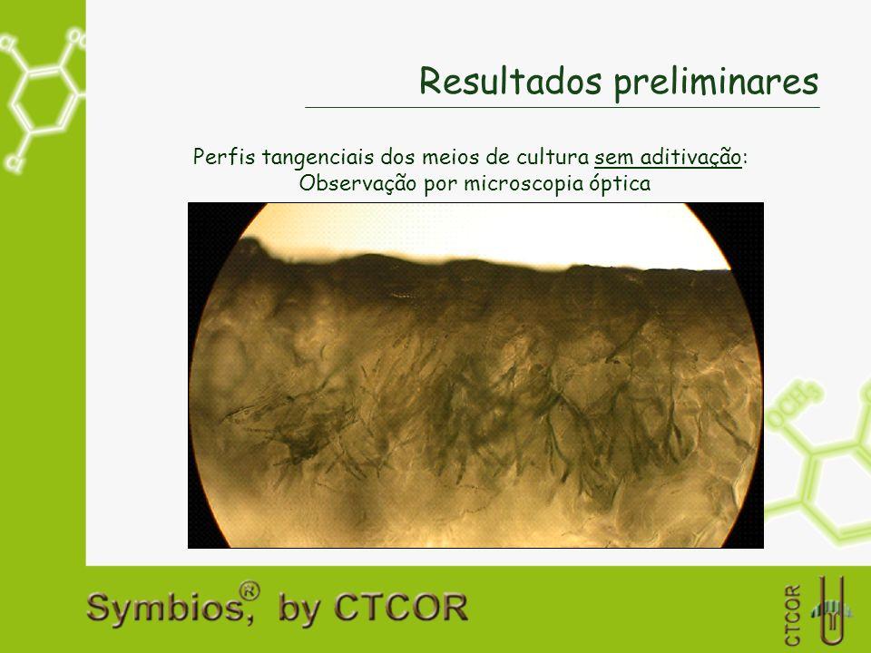 Resultados preliminares Perfis tangenciais dos meios de cultura sem aditivação: Observação por microscopia óptica