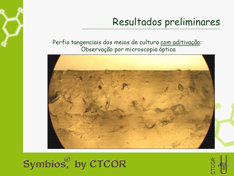Resultados preliminares Perfis tangenciais dos meios de cultura com aditivação: Observação por microscopia óptica