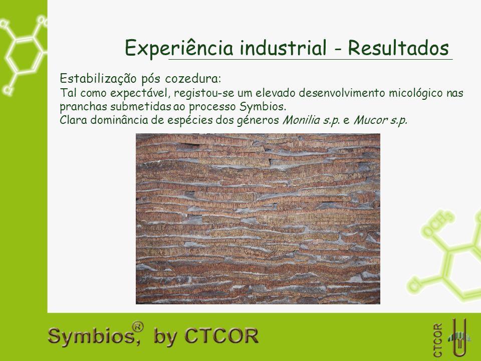 Experiência industrial - Resultados Estabilização pós cozedura: Tal como expectável, registou-se um elevado desenvolvimento micológico nas pranchas su
