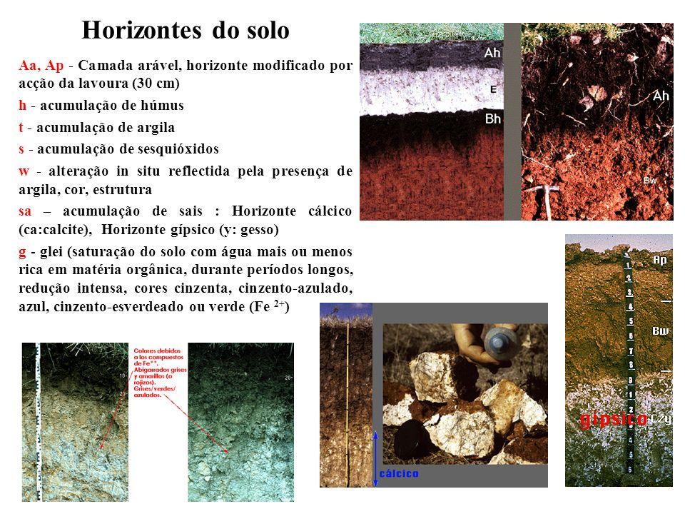 Horizontes do solo Aa, Ap - Camada arável, horizonte modificado por acção da lavoura (30 cm) h - acumulação de húmus t - acumulação de argila s - acum