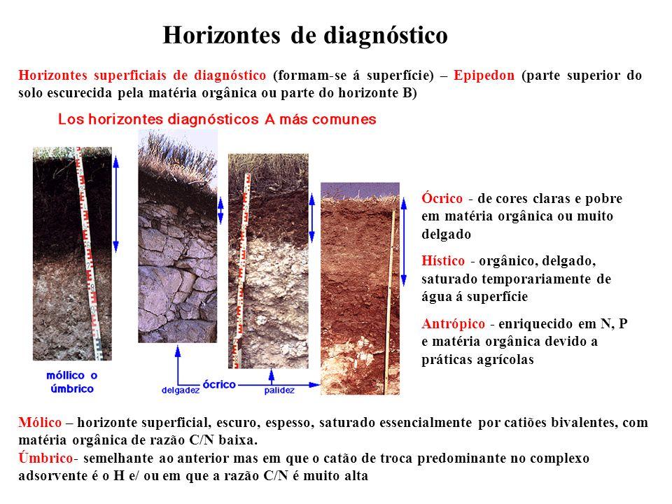 Horizontes de diagnóstico Horizontes superficiais de diagnóstico (formam-se á superfície) – Epipedon (parte superior do solo escurecida pela matéria o