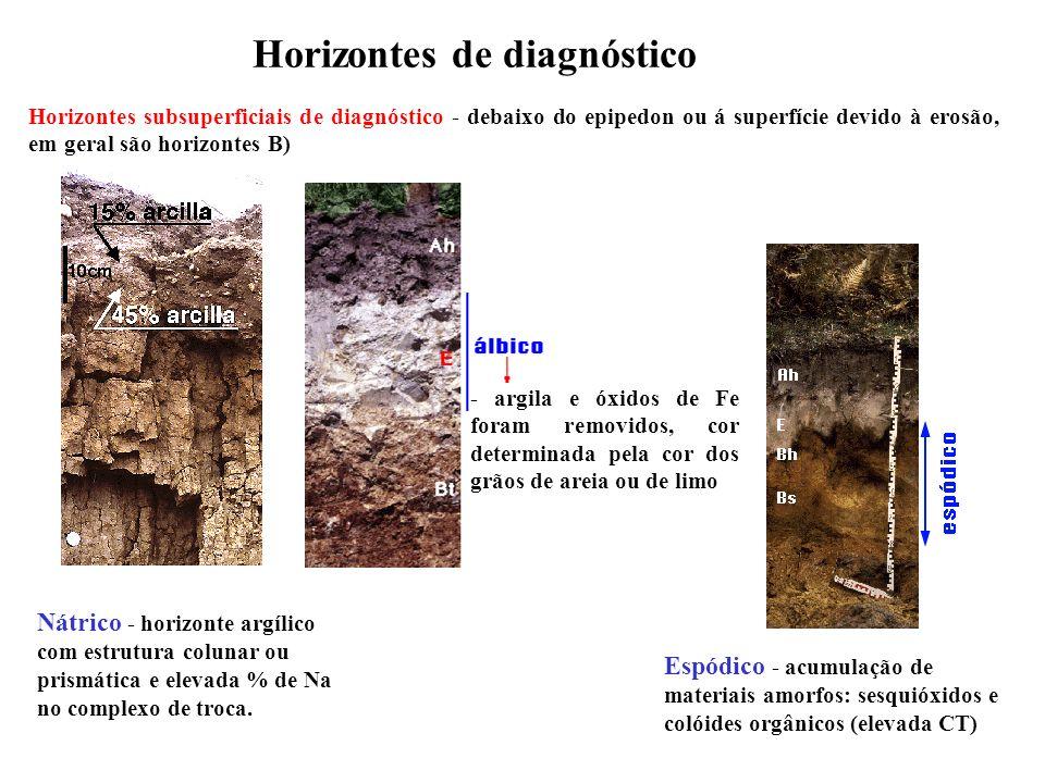 Horizontes de diagnóstico Horizontes subsuperficiais de diagnóstico - debaixo do epipedon ou á superfície devido à erosão, em geral são horizontes B)