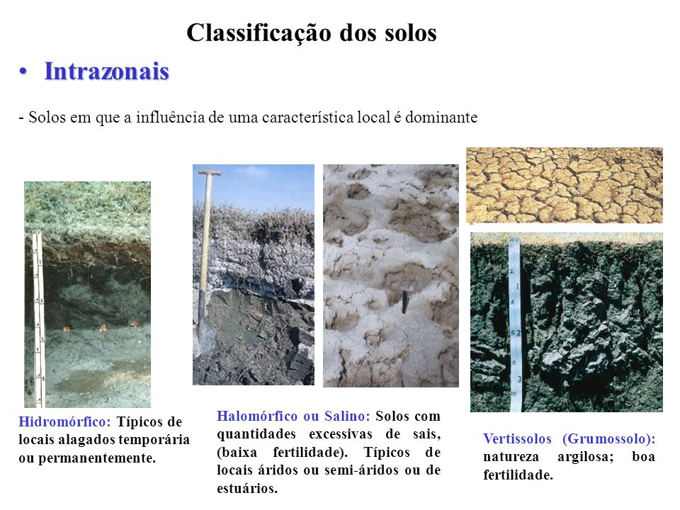 Classificação dos solos IntrazonaisIntrazonais - Solos em que a influência de uma característica local é dominante Vertissolos (Grumossolo): natureza