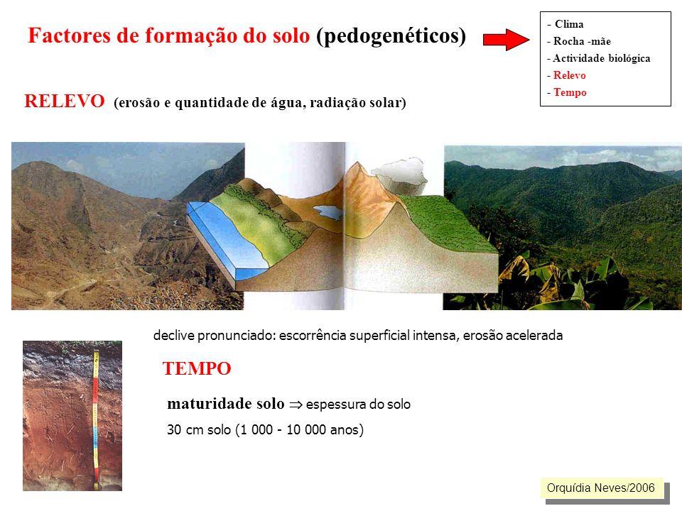 Factores de formação do solo (pedogenéticos) - Clima - Rocha -mãe - Actividade biológica - Relevo - Tempo RELEVO (erosão e quantidade de água, radiaçã