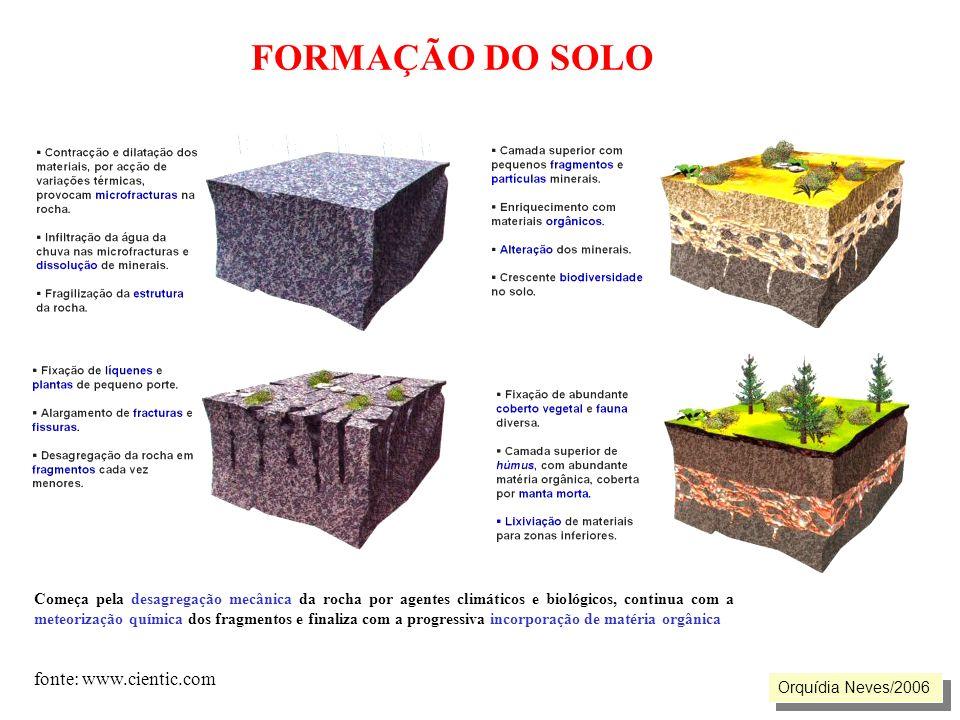 FORMAÇÃO DO SOLO Orquídia Neves/2006 Começa pela desagregação mecânica da rocha por agentes climáticos e biológicos, continua com a meteorização quími