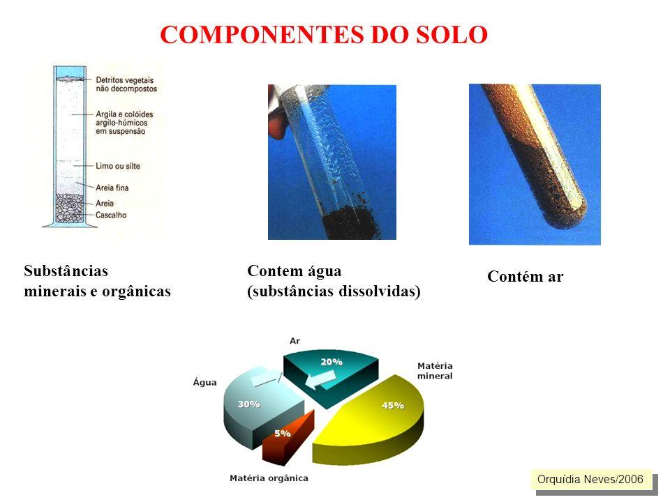 COMPONENTES DO SOLO Substâncias minerais e orgânicas Contem água (substâncias dissolvidas) Contém ar Orquídia Neves/2006