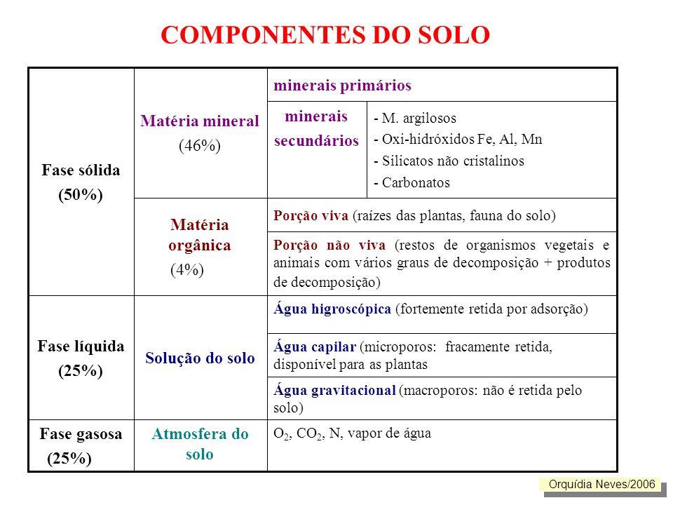 COMPONENTES DO SOLO - M. argilosos - Oxi-hidróxidos Fe, Al, Mn - Silicatos não cristalinos - Carbonatos O 2, CO 2, N, vapor de água Atmosfera do solo