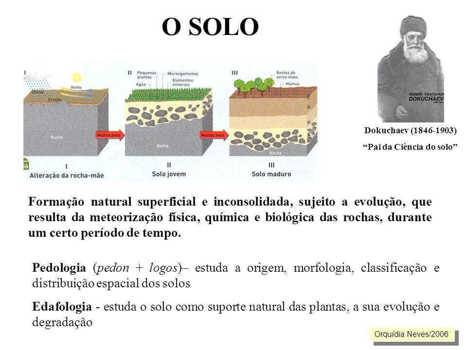 O SOLO Formação natural superficial e inconsolidada, sujeito a evolução, que resulta da meteorização física, química e biológica das rochas, durante u