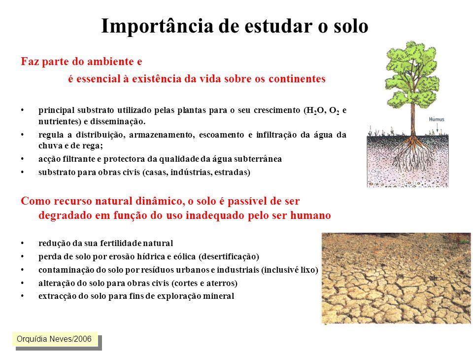 Importância de estudar o solo Faz parte do ambiente e é essencial à existência da vida sobre os continentes principal substrato utilizado pelas planta