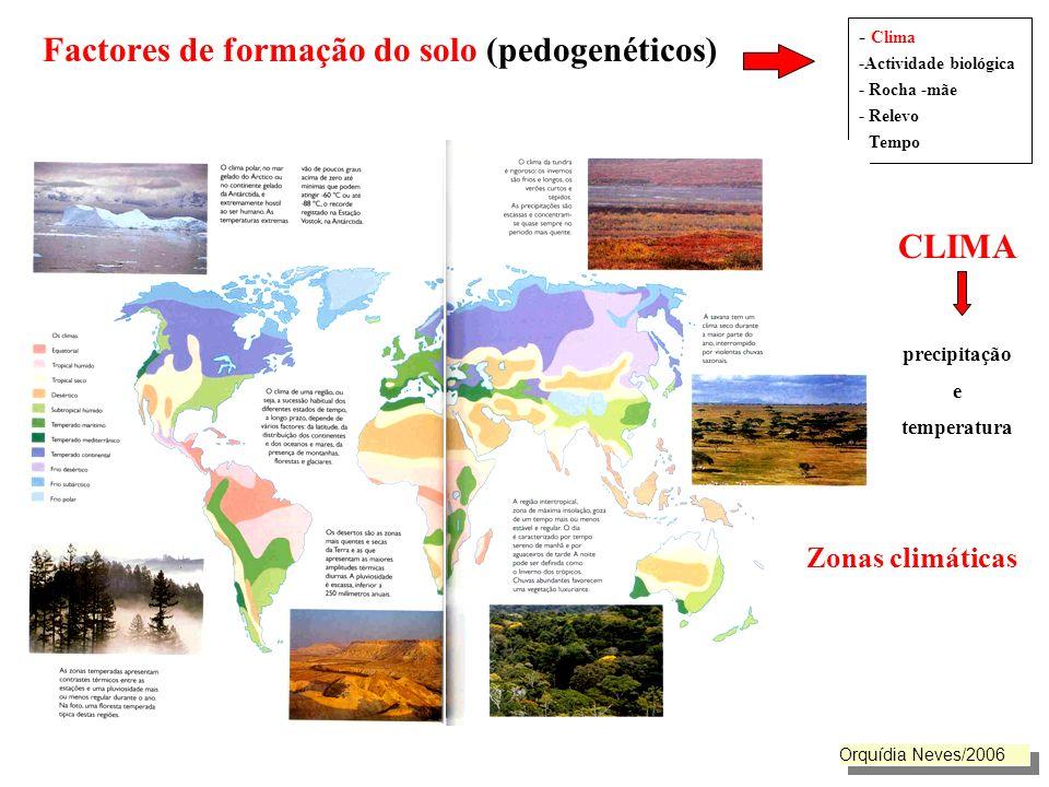 Factores de formação do solo (pedogenéticos). CLIMA precipitação e temperatura - Clima -Actividade biológica - Rocha -mãe - Relevo - Tempo Zonas climá