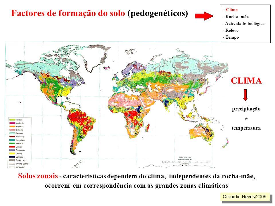 Factores de formação do solo (pedogenéticos). Solos zonais - características dependem do clima, independentes da rocha-mãe, ocorrem em correspondência