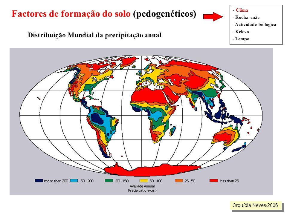 Factores de formação do solo (pedogenéticos). Distribuição Mundial da precipitação anual - Clima - Rocha -mãe - Actividade biológica - Relevo - Tempo
