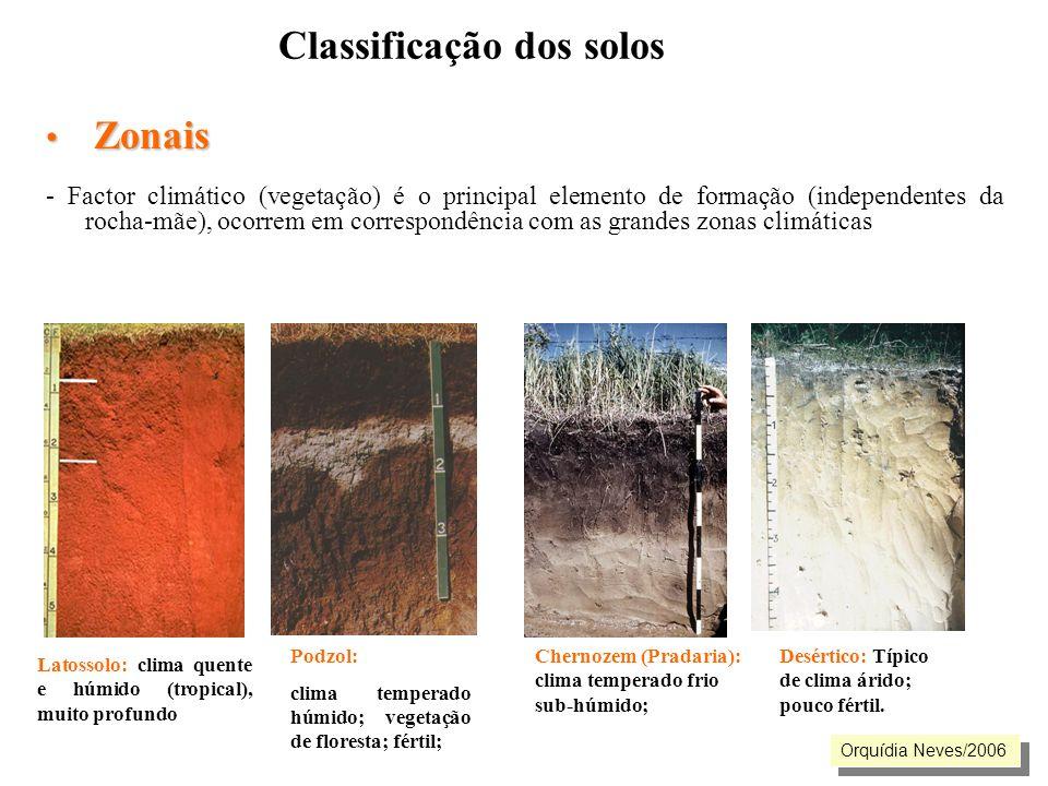 Classificação dos solos Zonais Zonais - Factor climático (vegetação) é o principal elemento de formação (independentes da rocha-mãe), ocorrem em corre