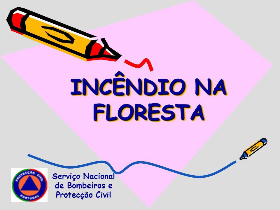 INCÊNDIO NA FLORESTA Serviço Nacional de Bombeiros e Protecção Civil