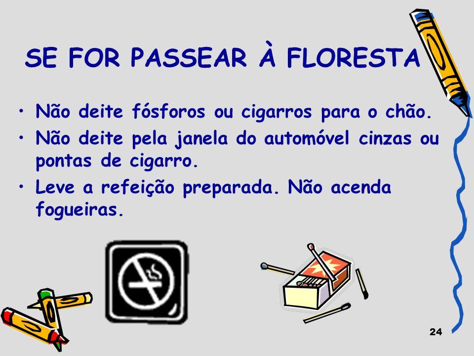 24 SE FOR PASSEAR À FLORESTA Não deite fósforos ou cigarros para o chão. Não deite pela janela do automóvel cinzas ou pontas de cigarro. Leve a refeiç