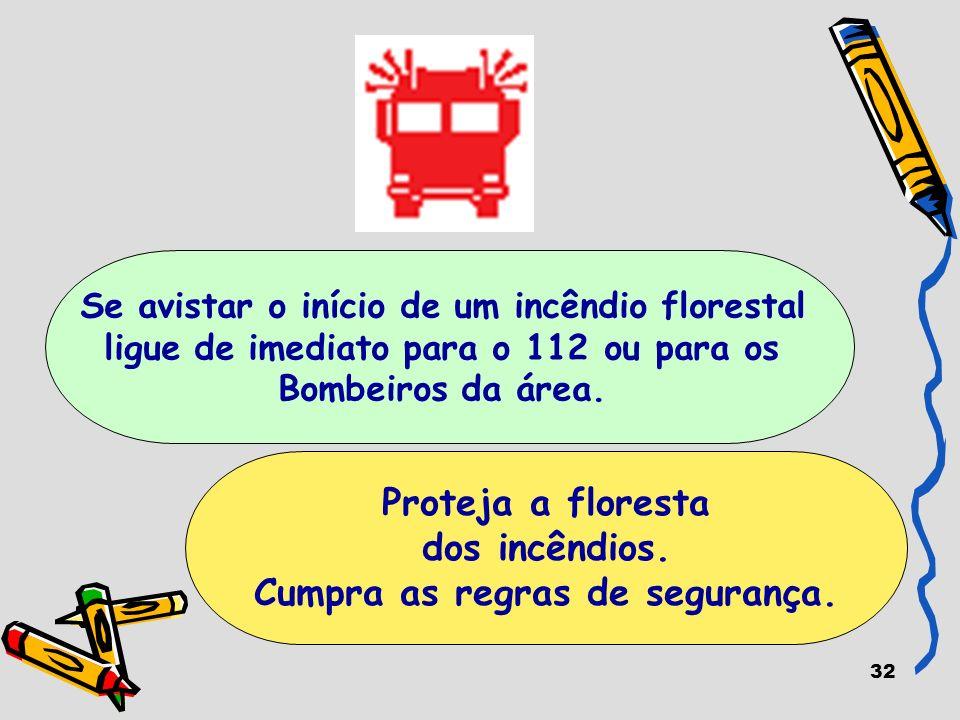 32 Proteja a floresta dos incêndios. Cumpra as regras de segurança. Se avistar o início de um incêndio florestal ligue de imediato para o 112 ou para