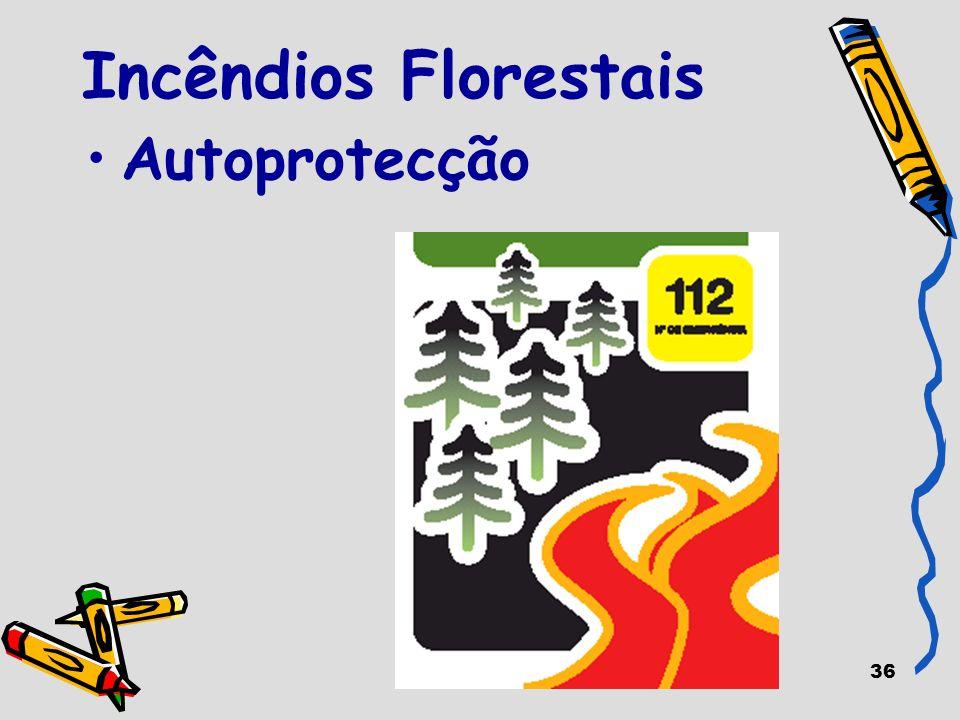 36 Incêndios Florestais Autoprotecção