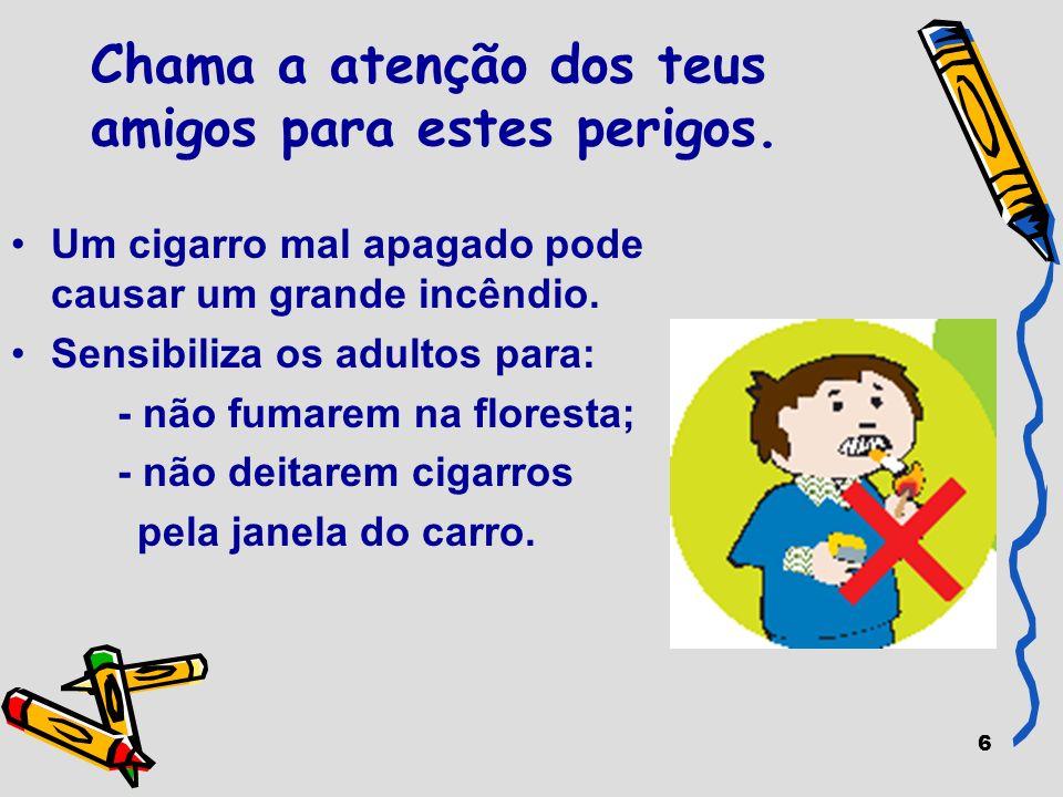 37 Os incêndios florestais são uma das principais catástrofes em Portugal.